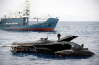 Ady Gil Struck by Japanese Whaling Ship