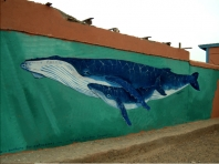 Taghazout School Mural